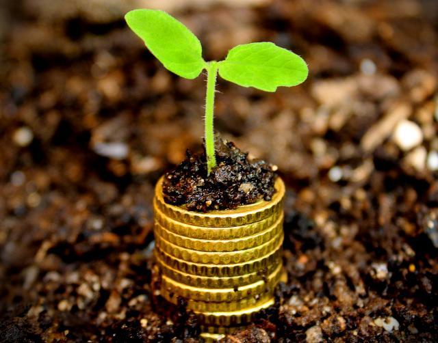 ICO, capital semilla para iniciar